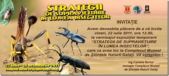 invitatie-expo-strategii-insecte-2011